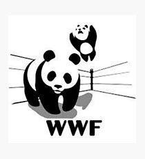 WWF Panda Wrestling (Parody) Photographic Print