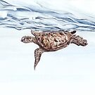 Caretta Caretta on the Waterline von Leoni Pfeiffer