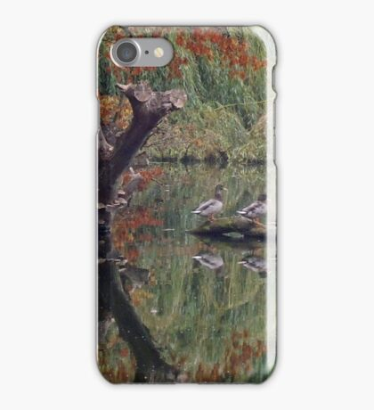 A Couple of Couples (Ducks at Witley)  iPhone Case/Skin