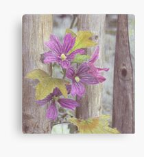 Purple Flowers Climb a Tree Canvas Print