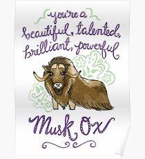 Beautiful musk ox Poster