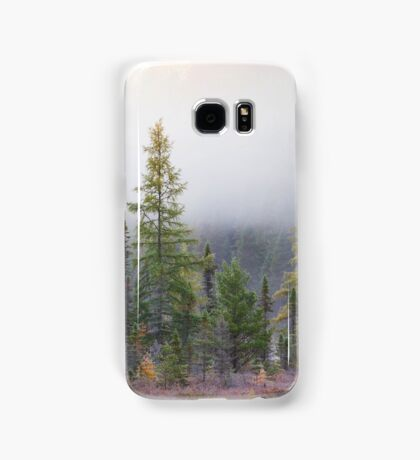 Autumn frost comes to Algonquin Park Samsung Galaxy Case/Skin