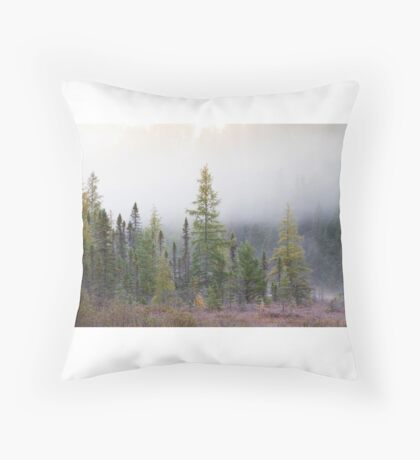 Autumn frost comes to Algonquin Park Throw Pillow