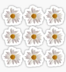 Daisy Patterned shirts and cases Sticker