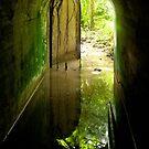Lenger Island Portal - Pohnpei, Micronesia by Alex Zuccarelli