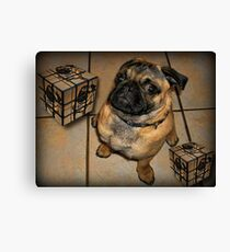 *•.¸♥♥¸.•*DON'T U BE CALLING ME SQUARE - PUG PICTURE - CARD*•.¸♥♥¸.•* Canvas Print