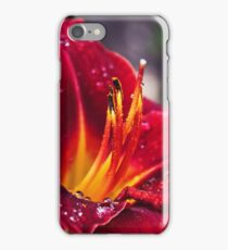 A Study In Lilies - XX iPhone Case/Skin