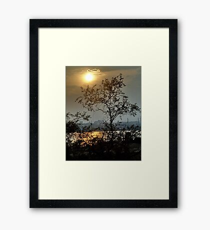 Summer Evening Framed Print