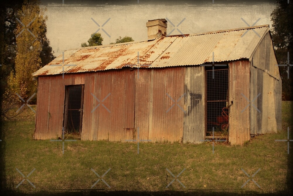 The Old Shed by Elaine Teague
