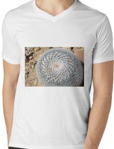 Round cactus on the ground Mens V-Neck T-Shirt