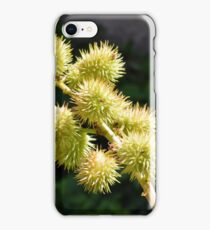 Natural green branch with spikes iPhone Case/Skin