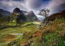 Three Sisters of Glencoe  by Angie Latham