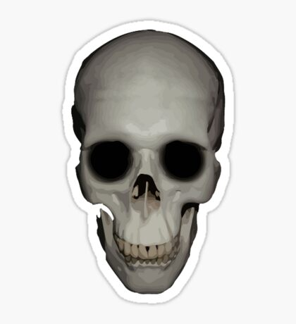 Human Skull Vector Isolated Sticker