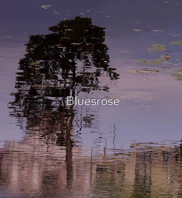 Tree by Bluesrose