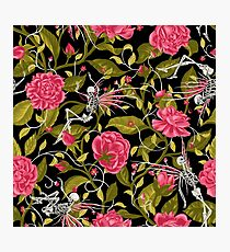 Death of Summer (pink and black) Photographic Print