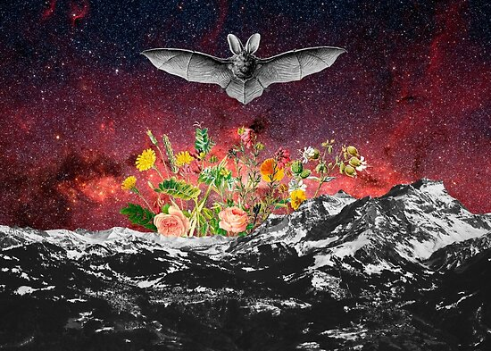 THE BAT by GloriaSanchez