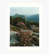 North Carolina Blue Ridge Mountains  Art Print