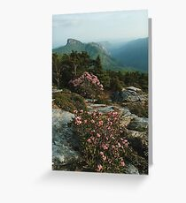 North Carolina Blue Ridge Mountains  Greeting Card