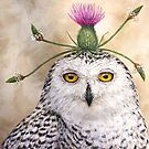 Cleveland, the snowy owl with thistle by Vicki Sawyer