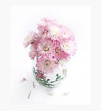 Pretty Pink Mums Still Life Photographic Print