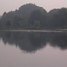 Swan Lake by Mindseyephoto
