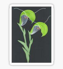 Australian native orchid green Sticker