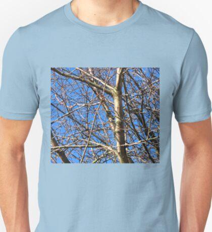 Die Vögel sind geflogen! T-Shirt