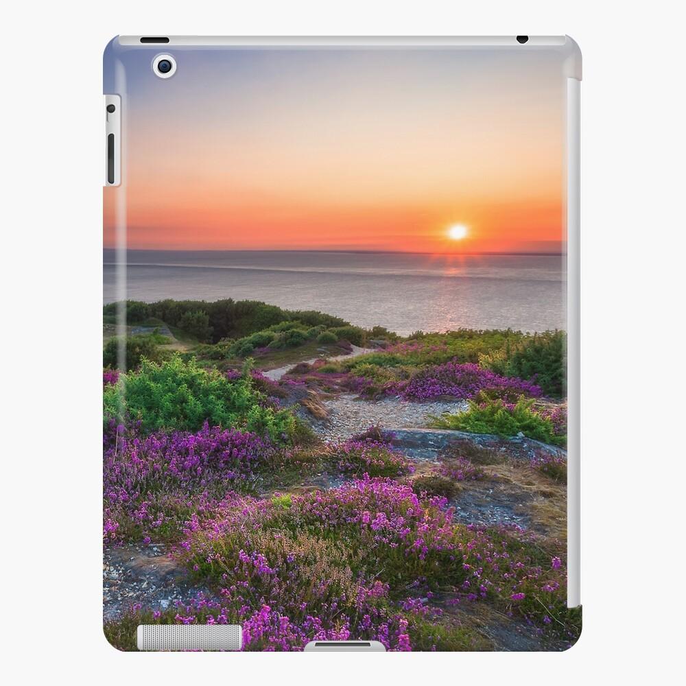 Headon Warren Sunset iPad Case & Skin