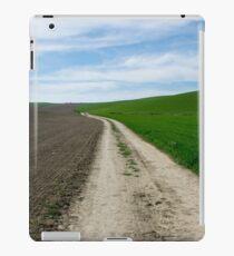 camino  iPad Case/Skin