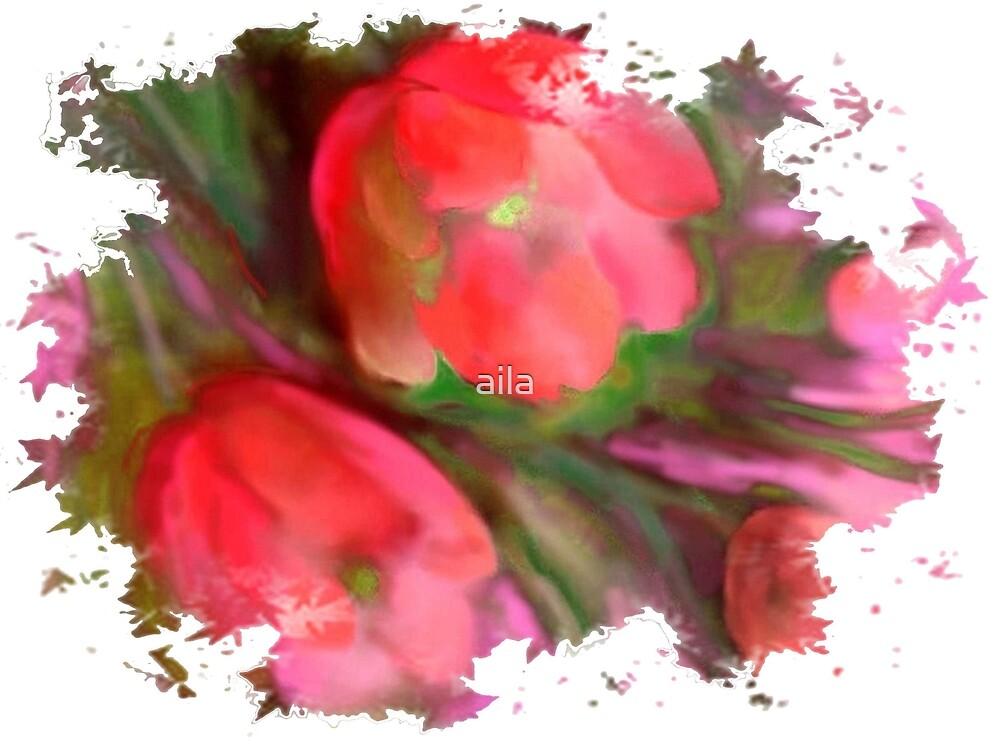 Tulips by aila