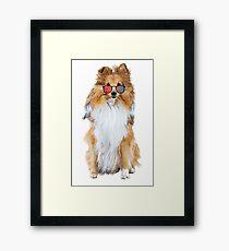 Cool Dog Framed Print