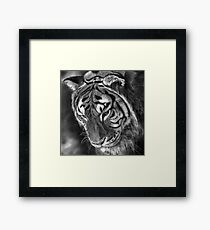 A Shadow Falls Framed Print