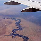 The Grand Canyon from a Plane by LaHickmana