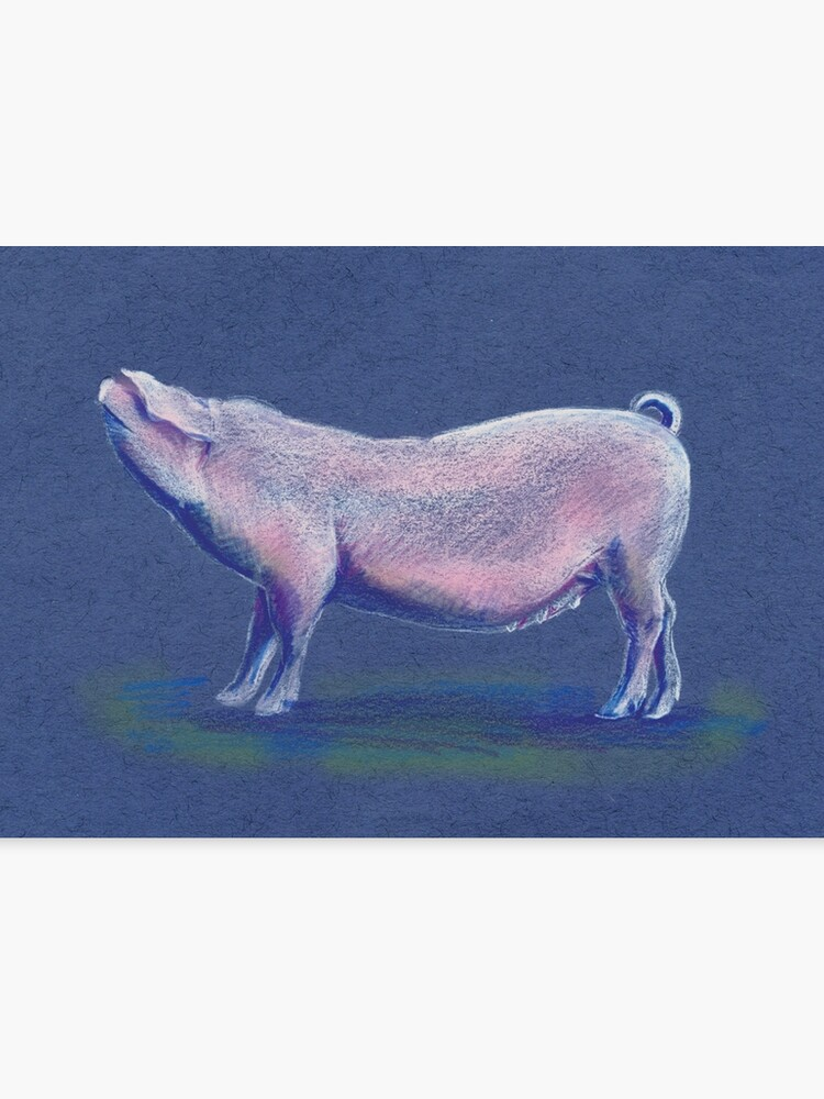 Cute Pig Colored Pencil Sketch Canvas Print