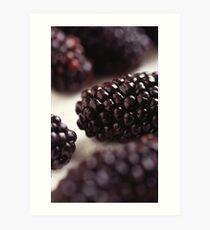 Blackberry Closeup Art Print