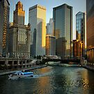 Chicago Evening by Barbara  Brown