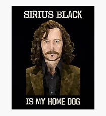 Sirius Black is My Home Dog Photographic Print