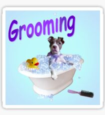 Grooming Bubble Tub Sticker