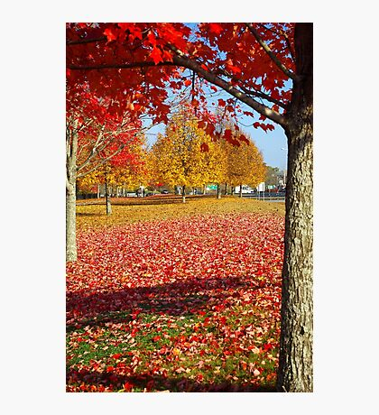 Autumn in New England Photographic Print