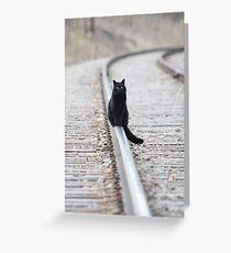 Black Cat on Railroad Tracks Greeting Card