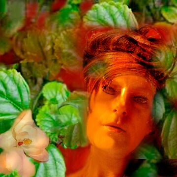 Woman in foliage by Socca