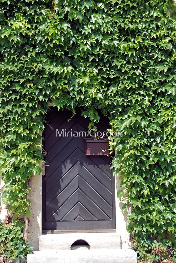Ivy Door by Miriam Gordon