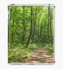 Deciduous forest in the summer iPad Case/Skin