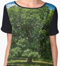 Centennial oak tree Women's Chiffon Top