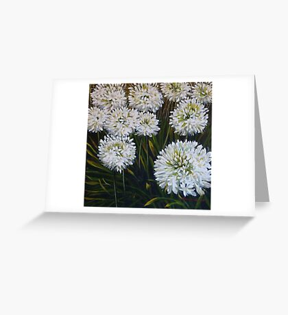 White agapanthus Greeting Card