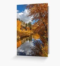 Susan River Autumn Reflections Greeting Card