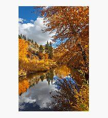 Susan River Autumn Reflections Photographic Print