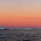 Mackellar Islets, Antarctica by Peter Morse