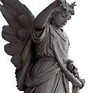 Angel by Tam Edey