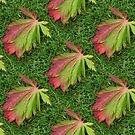 Autumn Leaves by Yampimon